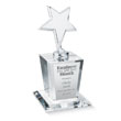 Star of Excellence Award